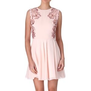 NWT Ted Baker Nude Pink Fit & Flare Event Dress 6